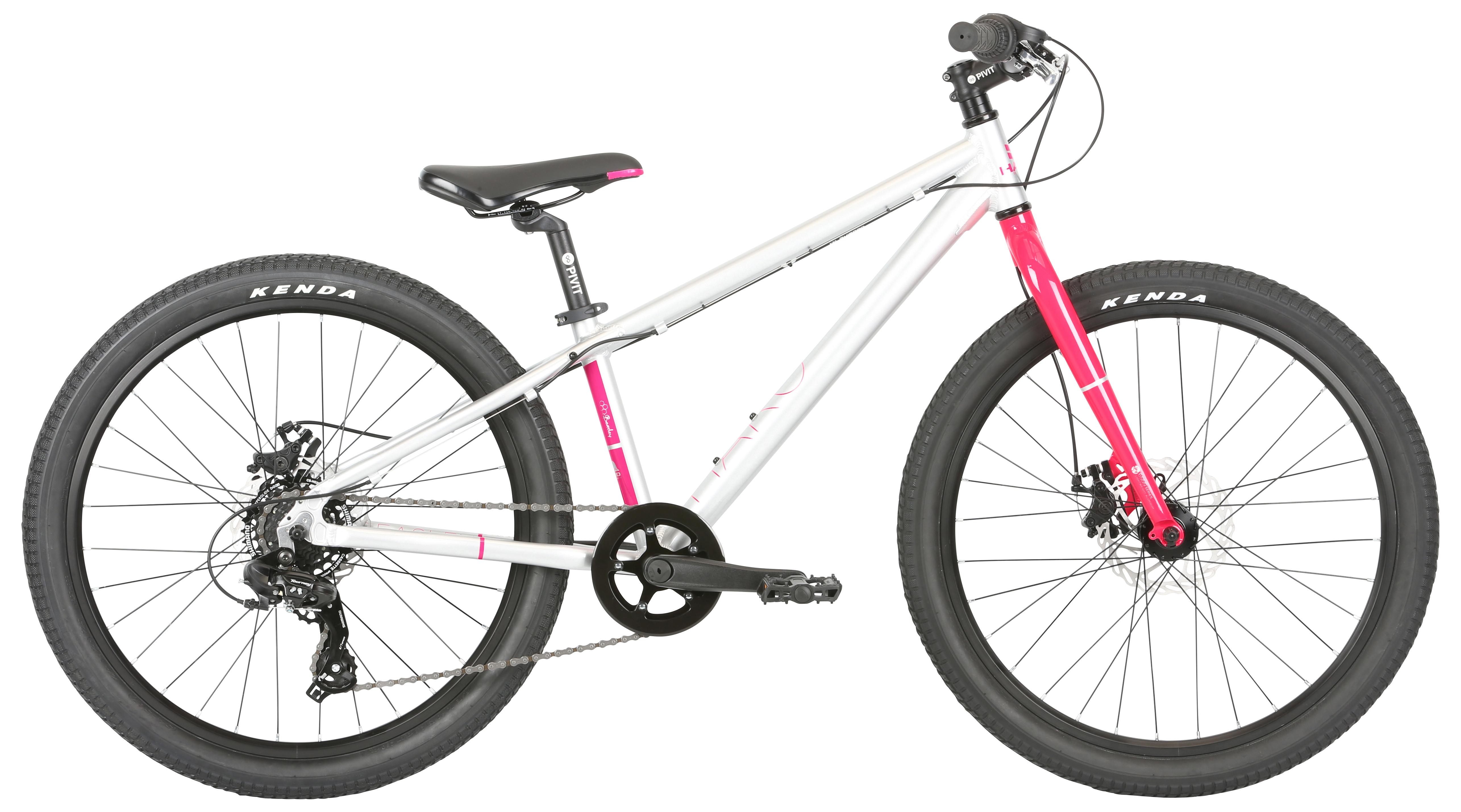 Велосипед Haro Beasley 24 2019 цена