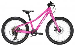 Семейный велосипеды  Trek  Roscoe 20  2020