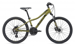 Велосипед  Giant  XTC Jr Disc 24  2020